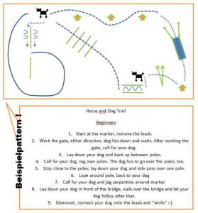 beginnerhorseanddogtrail2