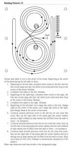 Pattern APHA Reining #5