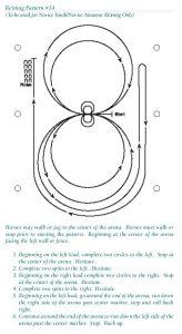 Pattern APHA Reining #14
